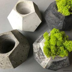 Sukulenty – rośliny dla zapominalskich ogrodników! Jak je wyeksponować?