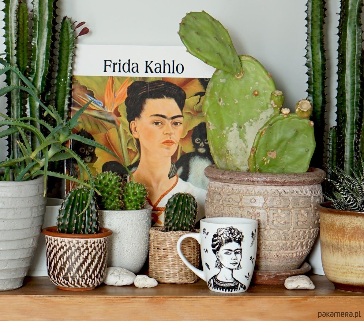 Frida Kahlo Plakat 2 Magazyn Pakamerapl